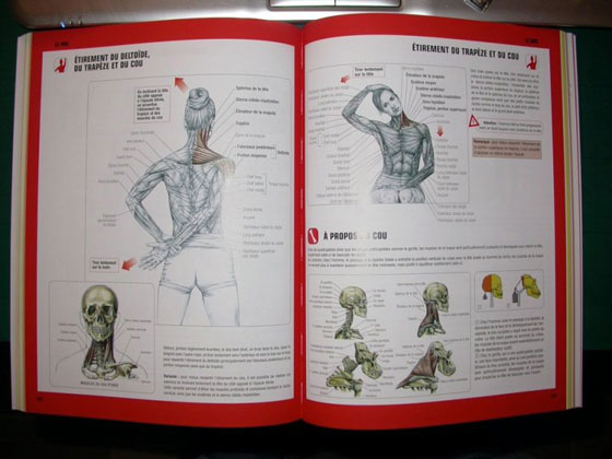 Guide des mouvements de musculation fr d ric delavier for Guide musculation