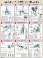 Poster musculation des fessiers